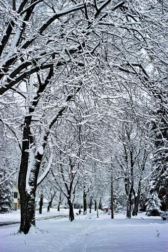 Winter's Work