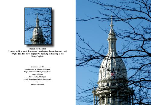 2020 12 30 December Capitol (1)