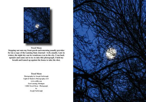 2020 12 30 Treed Moon (1)