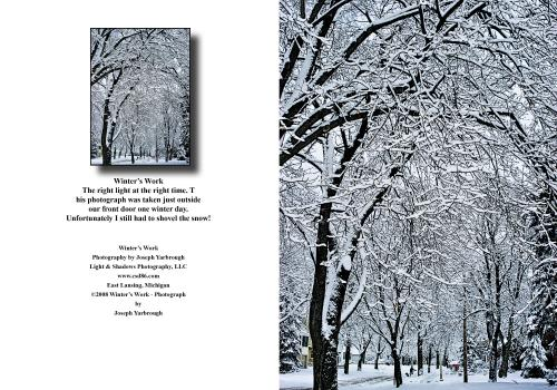 jpg 2020 12 31 Winter's Work