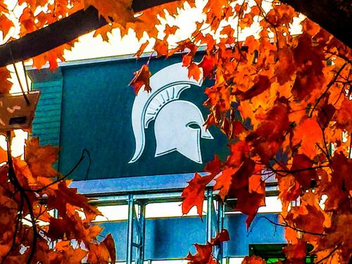 Fall is Football