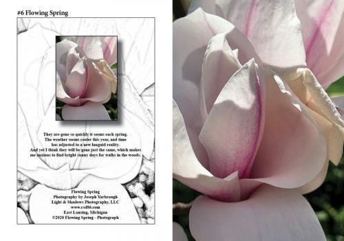 2020-08-06-flowing-spring